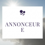 Read more about the article Annonceur E